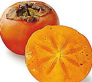 Kakis boules orange vif sur des arbres d nud s betty bossi - Arbre a kaki nom ...