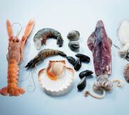 Poisson et fruits de mer