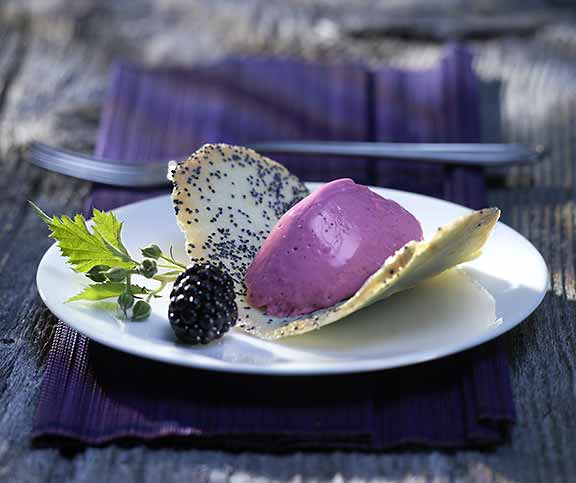 Brombeer-Mousse auf Mohn-Tuiles
